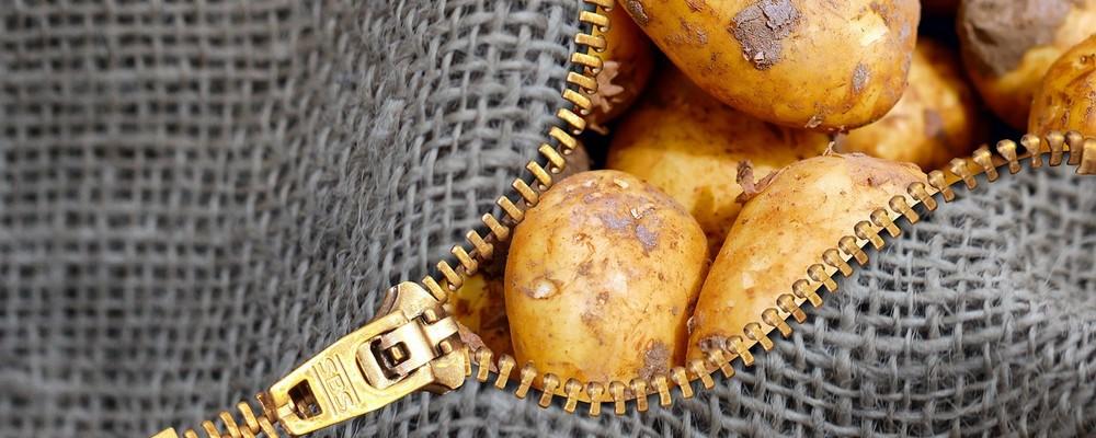 conserver les pommes de terre